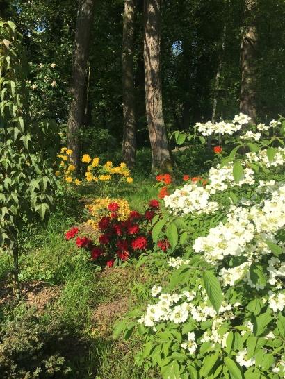 petit arboretum printemps 2