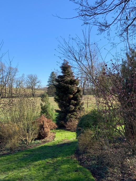petit arboreum hiver